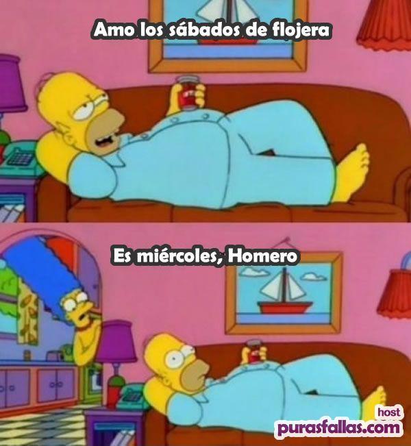 Memes-de-los-Simpson-5